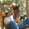 Cinnamon and Tom 2009