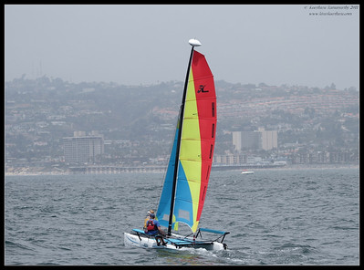 Sailing on Mission Bay, San Diego in the background, Whale watching trip, San Diego County, California, July 2011
