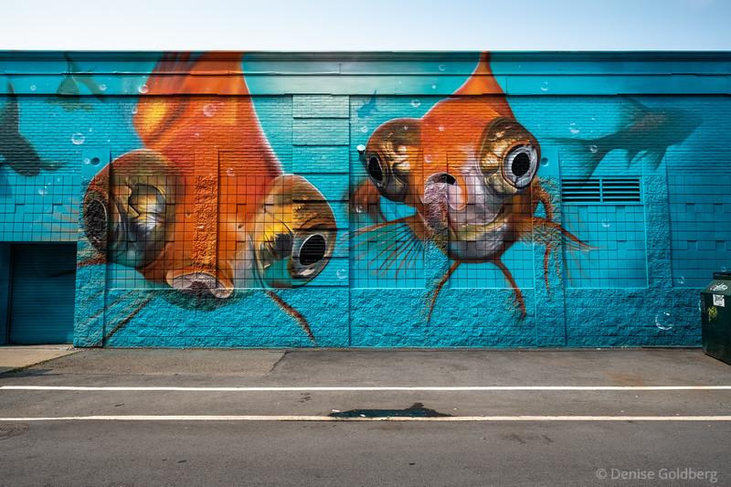 murals in Salem :: 2021