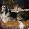 Briar and Raina. She later handled him in the breed class at Westminster.