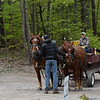 GREG SUKIENNIK -- MANCHESTER JOURNAL<br /> Joseph Orwell, 15, holds the brakes on Arch, left, and Fern, a pair of Suffolk Punch draft horses, at Merck Forest and Farmland Center on Saturday, May 19.