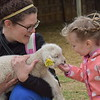GREG SUKIENNIK -- MANCHESTER JOURNAL<br /> Zoey Waters, right, makes friends with a lamb held by her mother, Kayte Waters of Manchester, at Meet the Lambs day at Merck Forest and Farmland Center in Rupert on Saturday, May 19.
