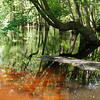 ECFT_LInda Pieochota_Reflections on High Water
