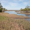 Beaufort_Jill Margeson_Nature Trail