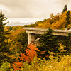 Linville Cove Viaduct - Wendell Dance