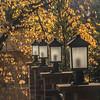 Lanterns - Dave Powers