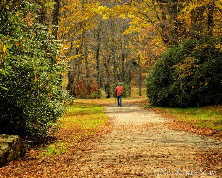 Boone Area Fall Field Trip