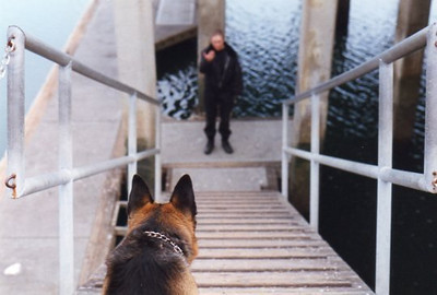 Environmental training with my boy, Ruger, in Dana Point Harbor, CA.  Photo by Peter J. Censnakas