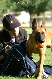 With my boy Doc as a pup in training in Banning, CA.  Photo by Stephanie O'Brien.