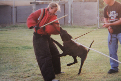 Doing some French Ring decoy training at Ron & Debbie Skinner's place in Aguanga, CA in 2003.  Aguanga is near Temecula, CA (Riverside County).  Photo by Rich Damico.