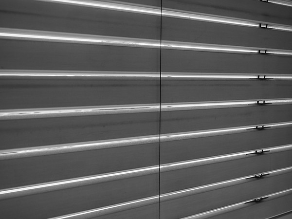 Window blinds in black and white