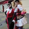 Harley Quinns