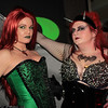 Poison Ivy and Batgirl