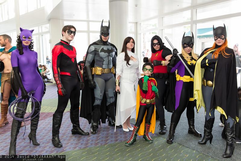 Catwoman, Nightwing, Batman, Talia al Ghul, Robins, and Batgirls