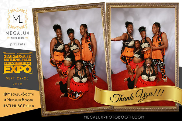Megalux Photo Booth Presents - The St. Louis Natural Hair & Black Cultural Expo 2018