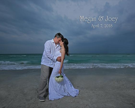 Bridal Cover