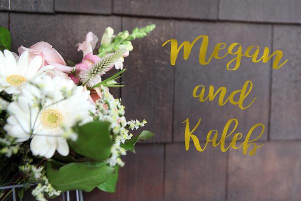Megan + Kaleb : The Wedding