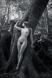 Forest Figures (B&W)
