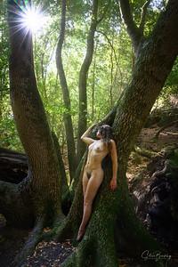 Forest Figures II