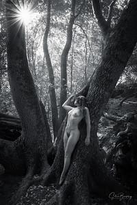 Forest Figures II (B&W)