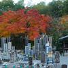 Cemetery at Adashino Nenbutsu-ji