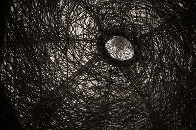 Nest at Federation Square