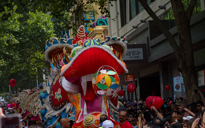 Big dragon on parade