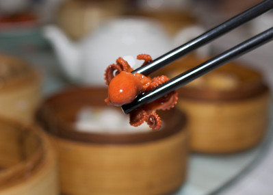Octopus, Yumcha.