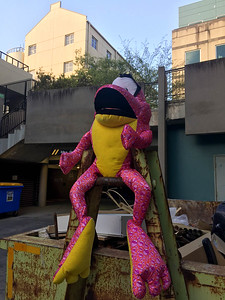Mystery Frog guarding the trash behind MBS