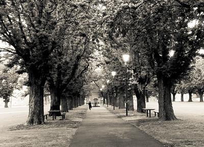 University Square Park at Dusk