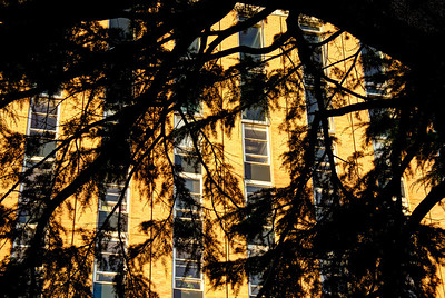 Raymond Priestley Building at sunset. Feb 2012.