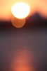 20170326_Prashphutita_07372795_1024Px-
