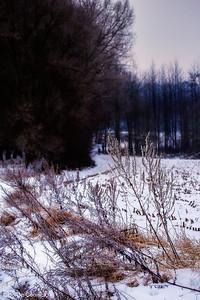 1301_WintersKravaal_086