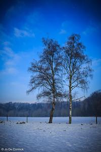 1301_WintersKravaal_132