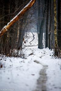 1301_WintersKravaal_095