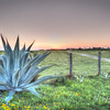 Spring sunset from Galveston Island