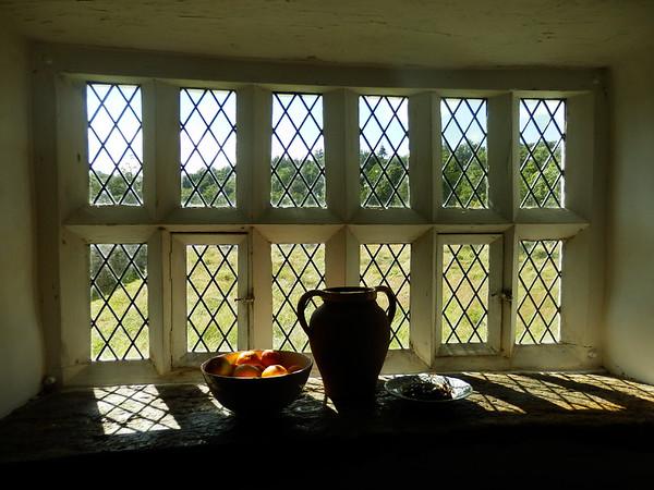 Window Dolbelydr