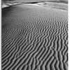 4657 ripples in dunes blk white