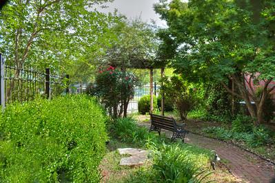 23  A secret garden