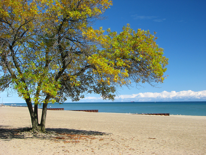 autumn on the beach