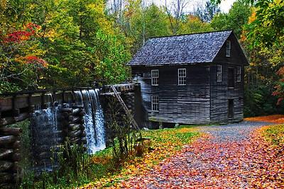 Jerry Koons - Mingus Mill