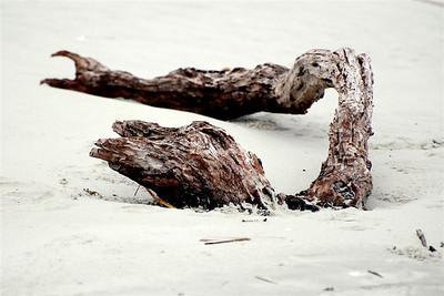 Kevin Sheehan - Driftwood Dragon
