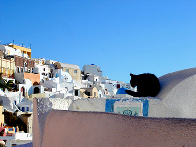 Mark Weiss - Santorini Cat