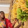 Rwanda 5 (1 of 1)