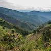 Rwanda 9 (1 of 1)
