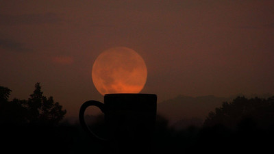 orange moon and coffee cup