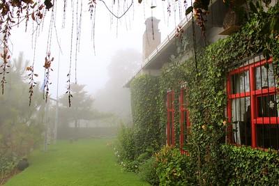 Village fog