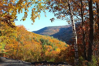 Catskill View - FAA