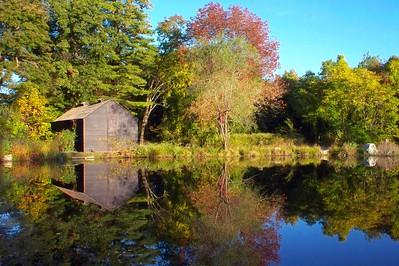 Longfellow Reflections