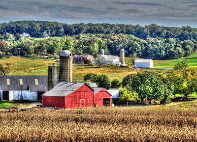 IMG_2958_Amish farm